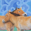 """Two Takhi"" (oil) by Susan Fox"