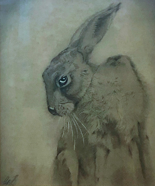 """The Last Great Hare"" (charcoal and graphite) by Alyson Balshukat"