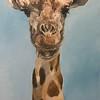 """Giraffe"" (oil) by Maria Parinskya"