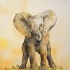 """Elephant Dance"" (watercolor) by Maureen Moore"