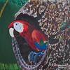 """Scarlet Macaw in Hollowed Nest"" (acrylic on canvas) by Raymond Raza"