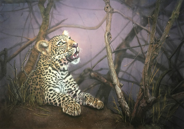 """Prince Charming"" (pastel) by Coleen Williams"
