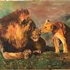 """Lions"" (oil) by Maria Parinskya"