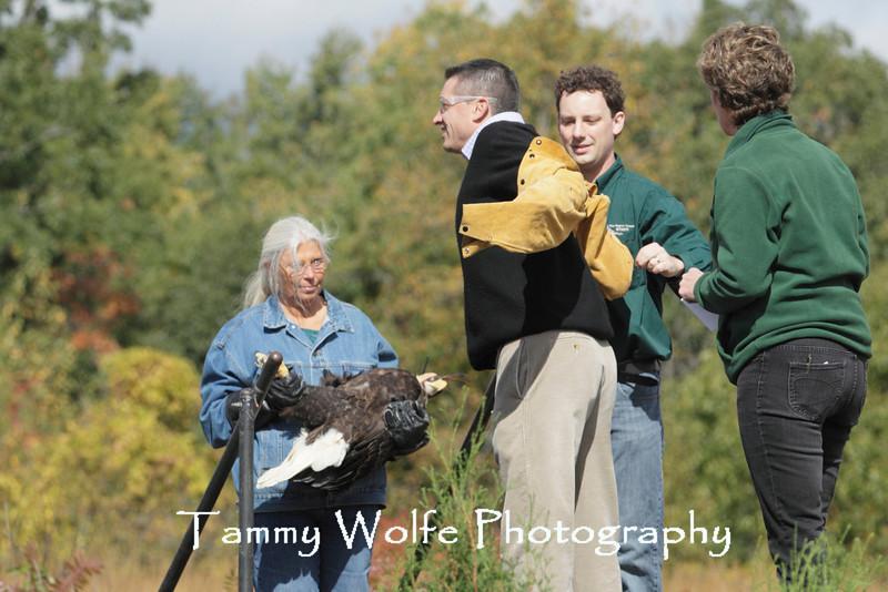 Fall Raptor Release, Carpenter Nature Center
