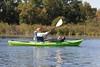 Trumpeter Swan (Cygnus buccinator) Banding: Heidi Rusch with cygnet in kayak