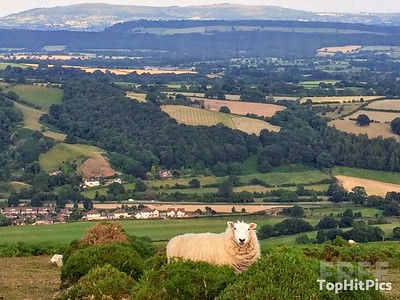 The Stunning Countryside in Little Stretton, Shropshire