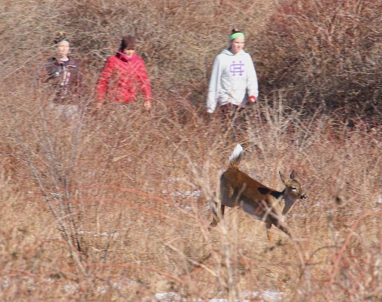 Sachuest Point National Wildlife Refuge
