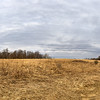 Panorama of Red Fox Trail Looking West