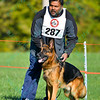 Dog performance at Purina Farms - 10/4/14