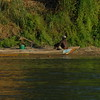 Selous_Rufiji-River_0048