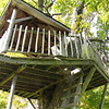 a closeup of the tree house.  One of the main supports (on the far right) had actually completely broken free from the tree trunk, so I decided not to go up to the platform for a closer inspection.
