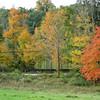fall foliage at John Jay Homestead Oct 15, 2012