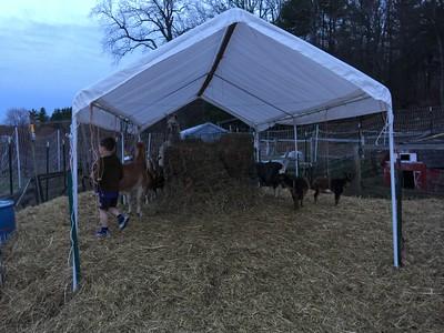 2015 - 04 - Michelle's Farm