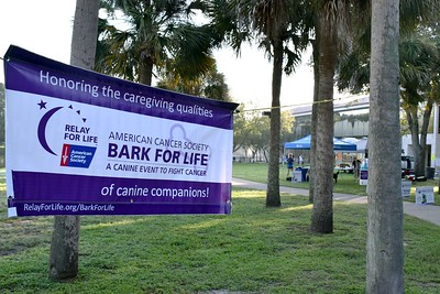 2016 Volusia Co Bark For Life (3)
