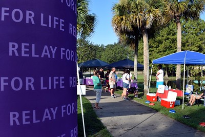 2016 Volusia Co Bark For Life (23)