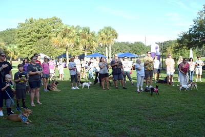 2016 Volusia Co Bark For Life (41)