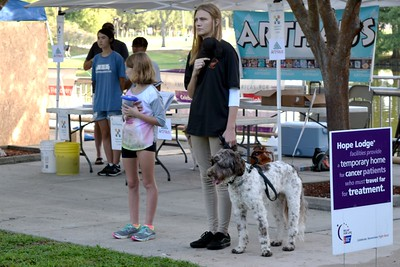 2016 Volusia Co Bark For Life (45)