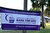 2016 Volusia Co Bark For Life (2)