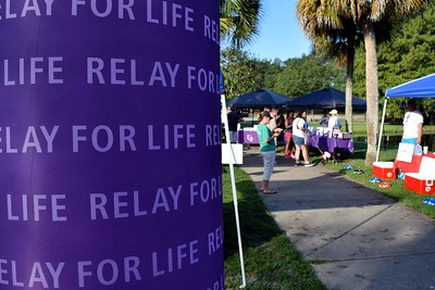 2016 Volusia Co Bark For Life (22)