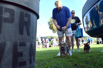 2016 Volusia Co Bark For Life (24)