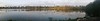 Panorama photo taken with my cell phone...view it large.<br /> Each white dot is a Cattle Egret.