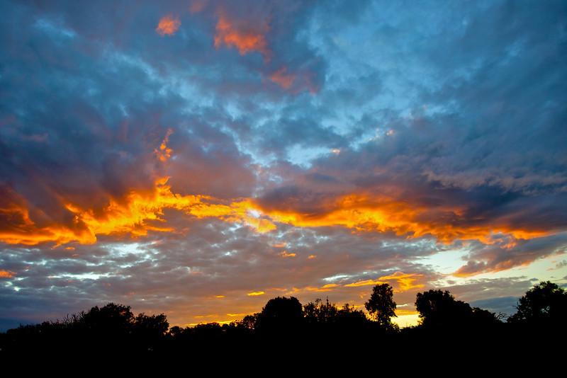Beautiful sunset in the bush