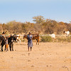 Woman and boy tend cattle in harsh dry Arfican landscape