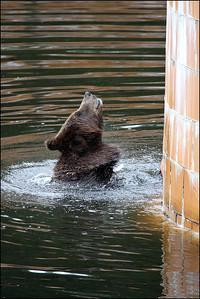 Alaska-Sitka(edit)_0201