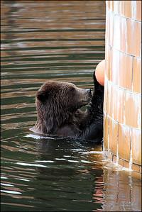Alaska-Sitka(edit)_0188
