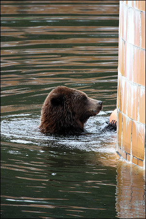 Alaska-Sitka(edit)_0202