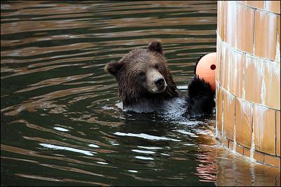 Alaska-Sitka(edit)_0187