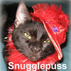 Snugglepuss was adopted from the Cat House and Adoption Center on Sunday,10-15-06<br /> Snugglepuss is a very affectionate, in-your-face people cat. She seeks out the company of people wherever they are, and has no interest in sharing her people with other cats. She's extremely intelligent and learns quickly. She can even pick out her own ensembles for picture day!