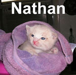 Nathan adopted from CHAC on 5/31/07.