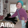 Alfie got adopted from the Cat House and Adoption Center on Saturday, January 12, 2008.  Alfie is very loving, charismatic, and a skilled conversationalist. His sleek black coat shows off his round gold eyes, making Alfie irresistible to touch.  His personality and tolerance will allow Alfie to blend into many different family environments.