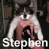 Stephen was adopted from the Cat House and Adoption Center on Friday, June 20, 2008.