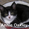Annie Oakley was adopted from the Cat House and Adoption Center on Saturday, January 10, 2009.