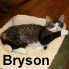 Bryson was adopted from his foster home on February 1, 2009.