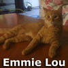 Emmie Lou was adopted into her foster family on Tuesday, March 19, 2013.