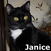 Janice was adopted from her foster home on Sunday, December 29, 2013.
