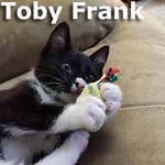 Toby Frank was adopted from his foster home at South Bay Veterinary Hospital on Thursday, June 18th, 2015.