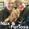 Furiosa and Nux (sister and brother) were adopted together from the Cat House and Adoption Center on Saturday, January 9, 2016.