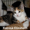 Katrina and Isabelle (sisters) were adopted from the Cat House and Adoption Center on Saturday, August 20, 2016.