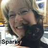 Sparky was adopted from the Cat House and Adoption Center on Saturday, February 6, 2016.
