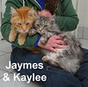 Jaymes and Kaylee were adopted from their foster home at Steamboat Animal Hospital on Saturday, January 17, 2017.