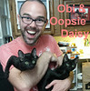 Hoopsie Daisy and Obi (sister and brother) were adopted together from the Cat House and Adoption Center on Saturday, July 22, 2017.