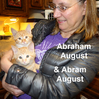 Abraham August and Abram August (brothers) were adopted from the Cat House and Adoption Center on Saturday, November 12, 2016.
