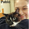 Pablo was adopted from Steamboat Animal Hospital to his former owner on Friday, May 12, 2017.