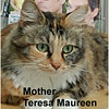 Mother Teresa Maureen and Adelaide August (Mother and Daughter) were adopted from their foster home at Steamboat Animal Hospital on Thursday, November 10, 2016.