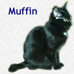 Muffin adopted 1/22/05.