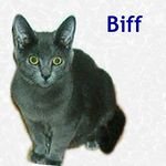 Biff adopted 1/22/05.